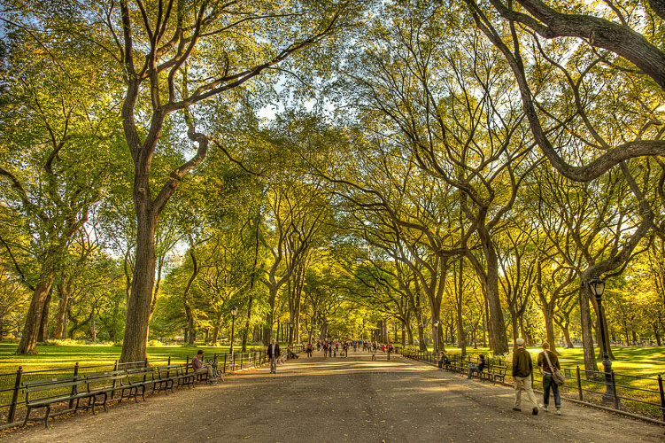 Seth Walters HDR New York Manhattan Central Park The Mall